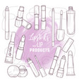 set of lipsticks and lip glosses vector image vector image