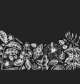 tea ingredients design on chalkboard hand vector image