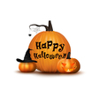 Two pumpkin with hat background vector image vector image