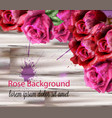 watercolor roses background beautiful vector image vector image