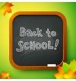 Chalk Back to School sign on black school board vector image