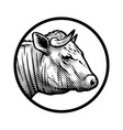 bull head logo in engraved style vector image