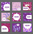 Collection of lilac red and pink flowers with vector image