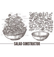 set sketch elements and components for salad vector image vector image