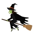 Witch flying with broomstick cartoon vector image