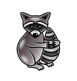 Cute cartoon raccoon isolated vector image