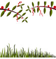 simple background with leaf grass and berry vector image