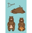 bear in different pose vector image vector image
