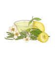 colorful drawing of cup of tea fresh lemon fruit vector image vector image