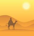 desert camel vector image vector image