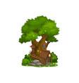 fairy house dwarf gnome elf home tree cartoon vector image