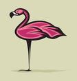 flamingo2 resize vector image