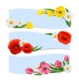 Floral Banners Horizontal vector image vector image