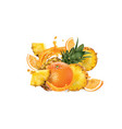 fresh pineapple and orange and a splash fruit vector image vector image