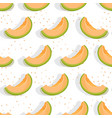 melon sliced seamless pattern on white background vector image