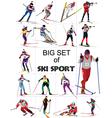 ski sport vector image vector image