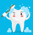 tooth washes itself with a toothbrush on a blue vector image vector image