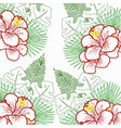 tropical pattern on a white background vector image