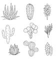Succulents plant set Botanical black and vector image
