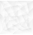 Abstract white triangle polygonal background vector image