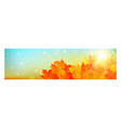 autumn banner with colorful leaves on gold bokeh vector image vector image