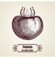 Hand drawn tomato vector image