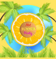 hot summer party promo poster with juicy orange vector image vector image
