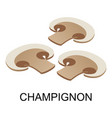 sliced champignon icon isometric style vector image vector image