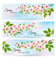 three nature spring banners with blossoming vector image vector image