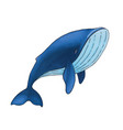 cute cartoon blue whale isolated on white vector image