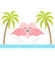 two flamingo standing on one leg pink heart vector image vector image