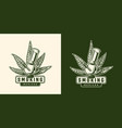 vintage cannabis emblem template vector image vector image