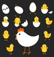 with mother hen and her chickens vector image vector image