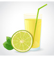 A glass of fresh lime juice and half of green lime vector image vector image