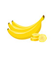 cartoon fresh banana isolated on white background vector image vector image