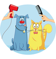 Cat and Dog at Pet Salon Cartoon vector image vector image