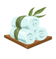 hot rolled fresh towels tied with long green vector image vector image