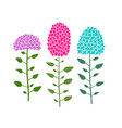 hydrangea flower sketch for your design vector image vector image