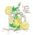 Sketch of Lemon Mint Detox water vector image vector image