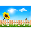 Summer nature background with sunflower and wooden vector image vector image