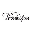 thank you hand lettering text vector image