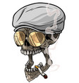 cartoon human skull in peaked cap and eyeglasses vector image