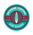 extreme surfing vintage isolated label vector image