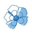 flower decoration floral ornament natural vector image