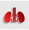 Human kidneys sign vector image vector image