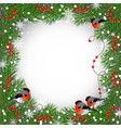 winter frame with bullfinches vector image vector image