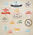 badge and labels vector image vector image
