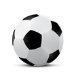Football - Soccer Ball vector image vector image