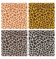 giraffe print seamless pattern set vector image
