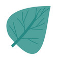 hand drawing green light of aovada leaf plant vector image vector image